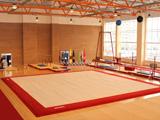 Gymnasiums and sports halls