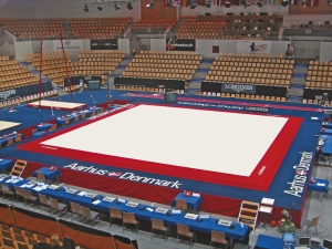 Competition exercise floor with overlay