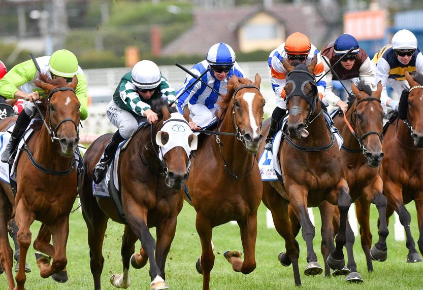 The project of the Swiss Timing system  horse racing system supply is successfully completed