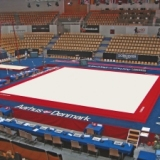 Competition exercise floor with overlay carpet - 14x14 m - FIG approved