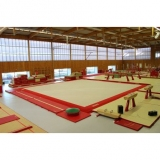 Training exercise floor with overlay carpet - 13.05 x 13.05 m