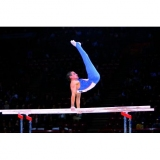 Competition parallel bars, FIG approved