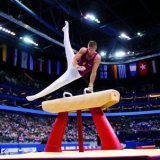 Pommel horse with genuine leather-covered body - FIG approved