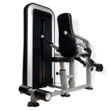 Chest and triceps E32 for fitness centers