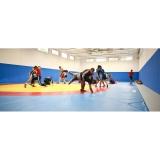 Wrestling Mats Team 6x6 m