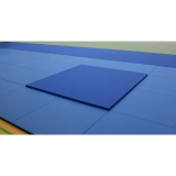 Judo Throwing Mat Impact