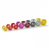 DUMBELLS of VINYL for aerobics and toning classes