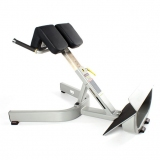 RS LUMBAR BENCH for fitness and weightlifting