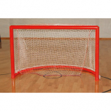 Goals for roller hockey
