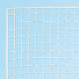 Net for roller hockey