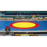 Wrestling mat cover for wrestling area, dimensions 12x12 mt