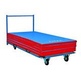 Horizontal transportation cart for mats